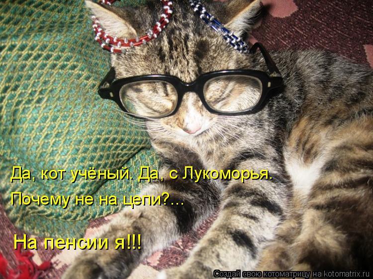 Котоматрица: Да, кот учёный. Да, с Лукоморья. Почему не на цепи?... На пенсии я!!!