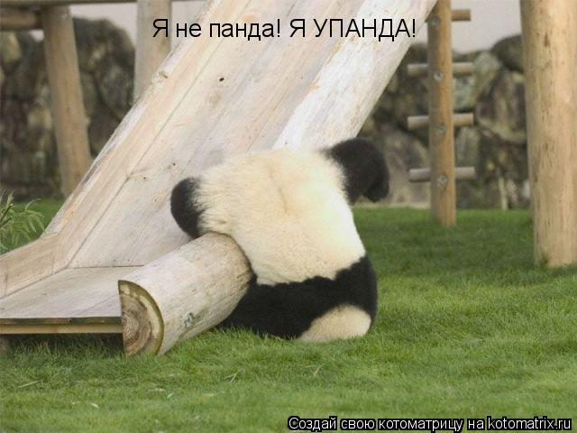 Котоматрица: Я не панда! Я УПАНДА!