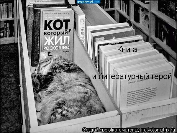 Котоматрица: Книга и литературный герой