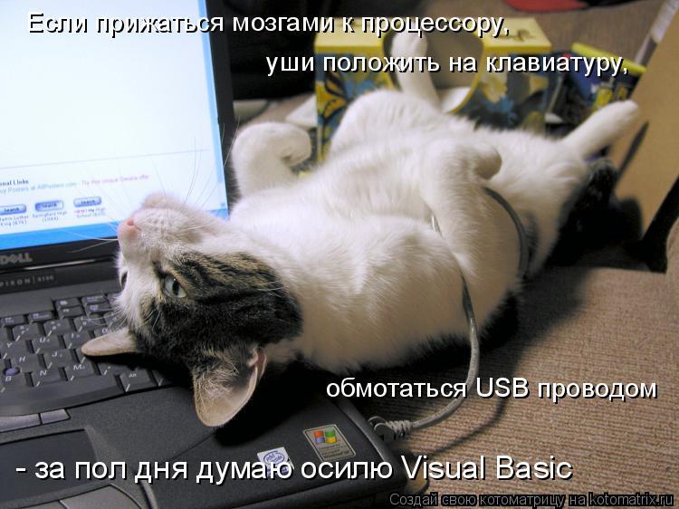 Котоматрица: Если прижаться мозгами к процессору,  уши положить на клавиатуру,  обмотаться USB проводом - за пол дня думаю осилю Visual Basic