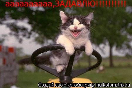 Котоматрица: аааааааааа,ЗАДАВЛЮ!!!!!!!!!!