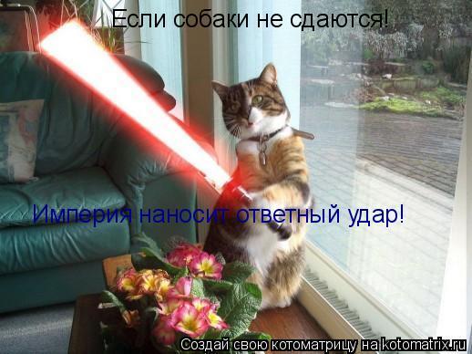 Котоматрица: Если собаки не сдаются! Империя наносит ответный удар!