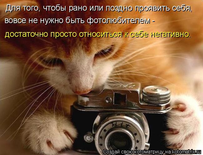 Котоматрица: Для того, чтобы рано или поздно проявить себя, достаточно просто относиться к себе негативно.  вовсе не нужно быть фотолюбителем -