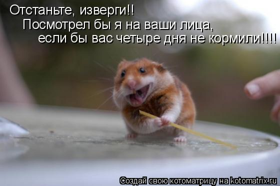 Котоматрица: Отстаньте, изверги!! Посмотрел бы я на ваши лица,  если бы вас четыре дня не кормили!!!!