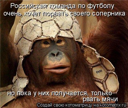 Котоматрица: Российская команда по футболу очень хочет порвать своего соперника но пока у них получается, только  рвать мячи