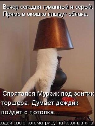 Котоматрица: Спрятался Мурзик под зонтик торшера. Думает дождик  Вечер сегодня туманный и серый.  Прямо в окошко плывут облака. пойдет с потолка...