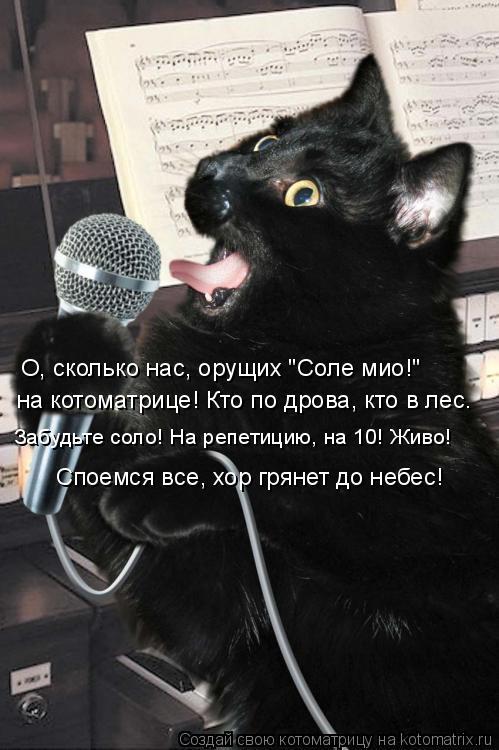 """Котоматрица: на котоматрице! Кто по дрова, кто в лес. Забудьте соло! На репетицию, на 10! Живо! О, сколько нас, орущих """"Соле мио!""""  Споемся все, хор грянет до не"""