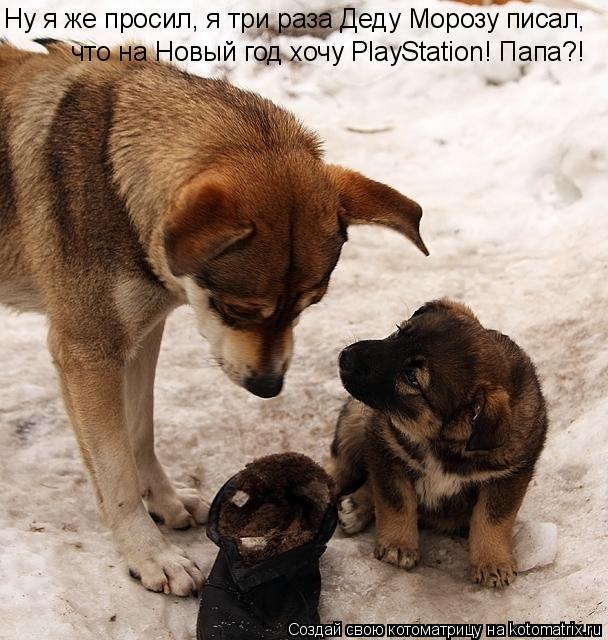 Котоматрица: Ну я же просил, я три раза Деду Морозу писал, Ну я же просил, я три раза Деду Морозу писал, что на Новый год хочу PlayStation! Папа?!