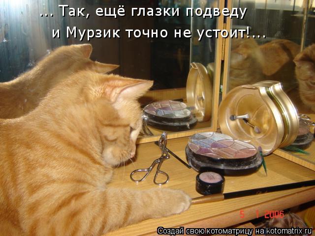 Котоматрица: ... Так, ещё глазки подведу и Мурзик точно не устоит!...