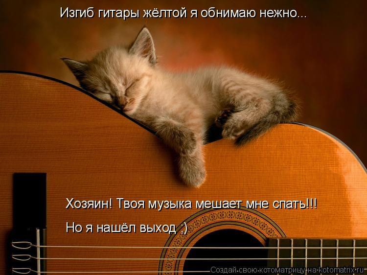 Котоматрица: Изгиб гитары жёлтой я обнимаю нежно... Хозяин! Твоя музыка мешает мне спать!!! Но я нашёл выход ;)