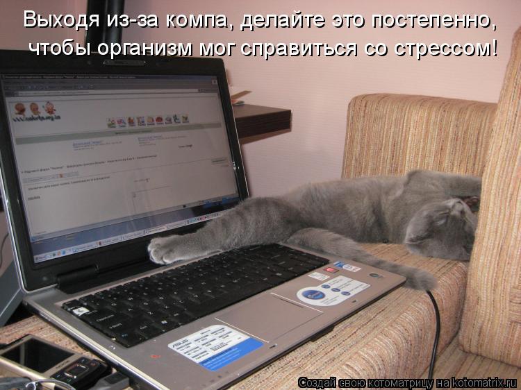 http://kotomatrix.ru/images/lolz/2009/06/16/Xf.jpg