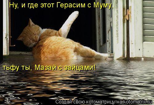 Котоматрица: Ну, и где этот Герасим с Муму, тьфу ты, Мазай с зайцами!