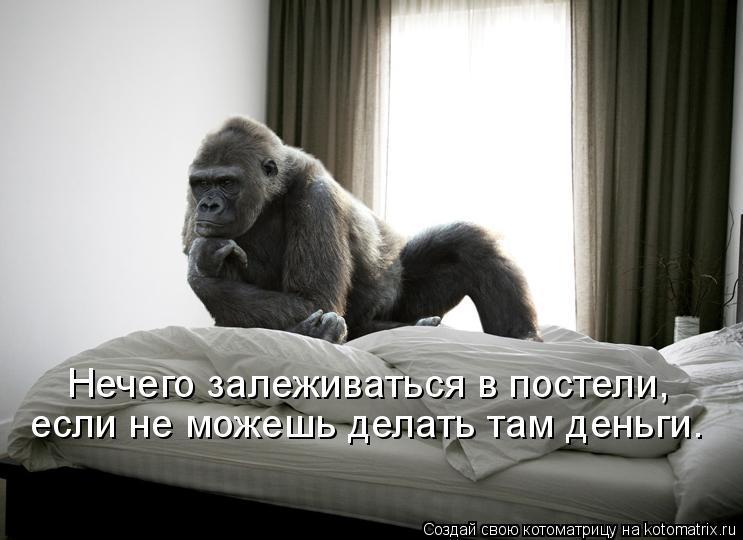 Котоматрица: Нечего залеживаться в постели,  если не можешь делать там деньги.