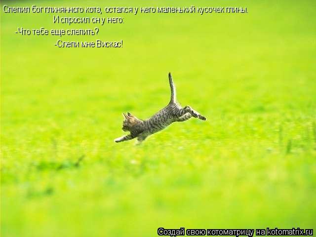 Котоматрица: Слепил бог глинянного кота, остался у него маленький кусочек глины. И спросил он у него: -Что тебе еще слепить? -Слепи мне Вискас!