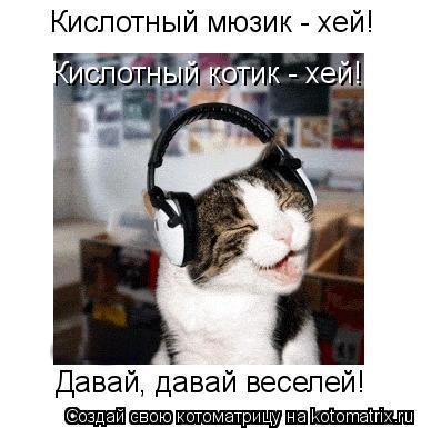 Котоматрица: Кислотный мюзик - хей! Кислотный котик - хей! Давай, давай веселей!