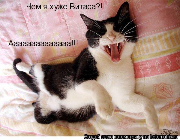 Котоматрица: Чем я хуже Витаса?! Аааааааааааааа!!!
