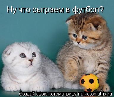 Котоматрица: Ну что сыграем в футбол?
