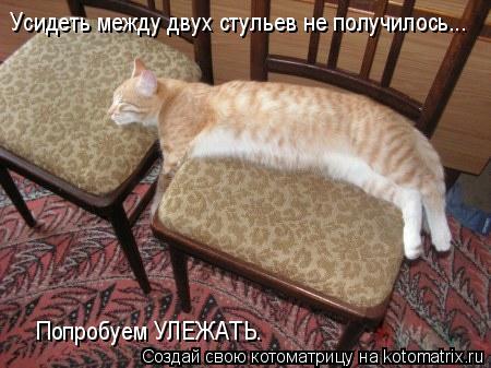 Котоматрица: Усидеть между двух стульев не получилось... Попробуем УЛЕЖАТЬ.