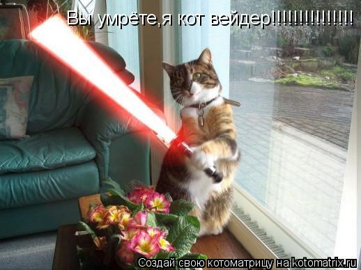 Котоматрица: Вы умрёте,я кот вейдер!!!!!!!!!!!!!!!