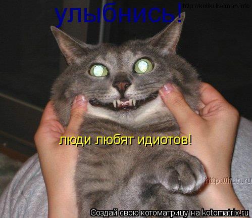 Котоматрица: улыбнись! люди любят идиотов!