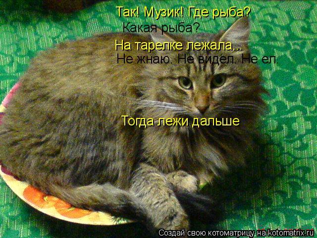 Котоматрица: Какая рыба? На тарелке лежала... Так! Музик! Где рыба? Не жнаю. Не видел. Не ел. Тогда лежи дальше