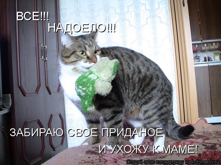 Котоматрица: ВСЕ!!! НАДОЕЛО!!! ЗАБИРАЮ СВОЕ ПРИДАНОЕ  И УХОЖУ К МАМЕ!