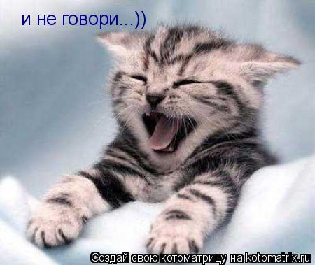 Котоматрица: и не говори...))