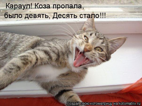Котоматрица: Караул! Коза пропала, было девять, Десять стало!!!