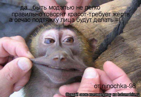 Котоматрица: да...быть модэлью не легко правильно говорят красот-требует жертв а сечас подтяжку лица будут делать =( от ninochka-98