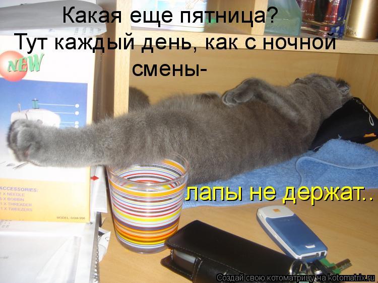 Котоматрица: Какая еще пятница? Тут каждый день, как с ночной  смены- лапы не держат..