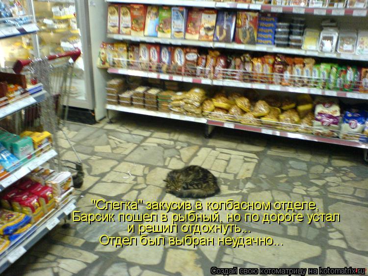 """Котоматрица: """"Слегка"""" закусив в колбасном отделе, Барсик пошел в рыбный, но по дороге устал и решил отдохнуть... Отдел был выбран неудачно..."""