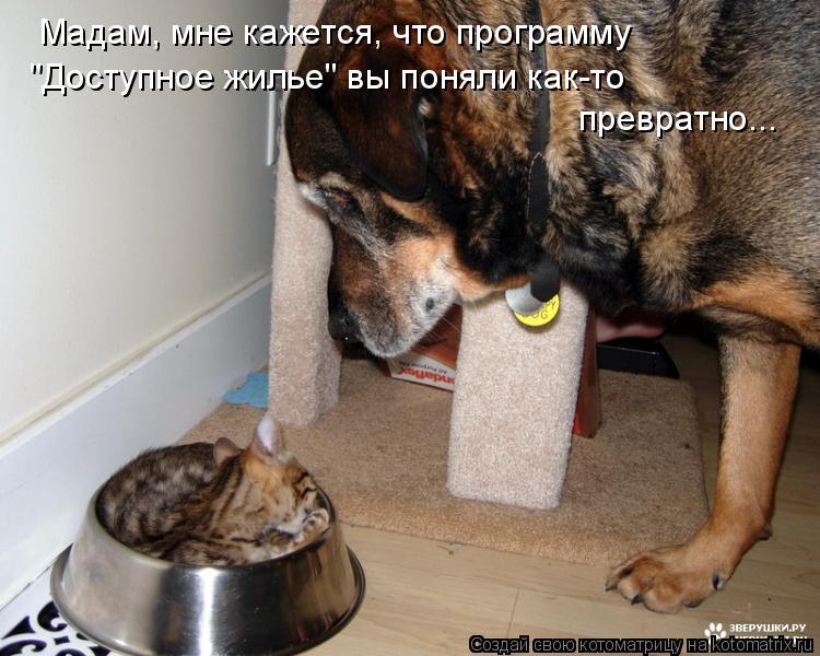 http://kotomatrix.ru/images/lolz/2009/06/17/D1.jpg
