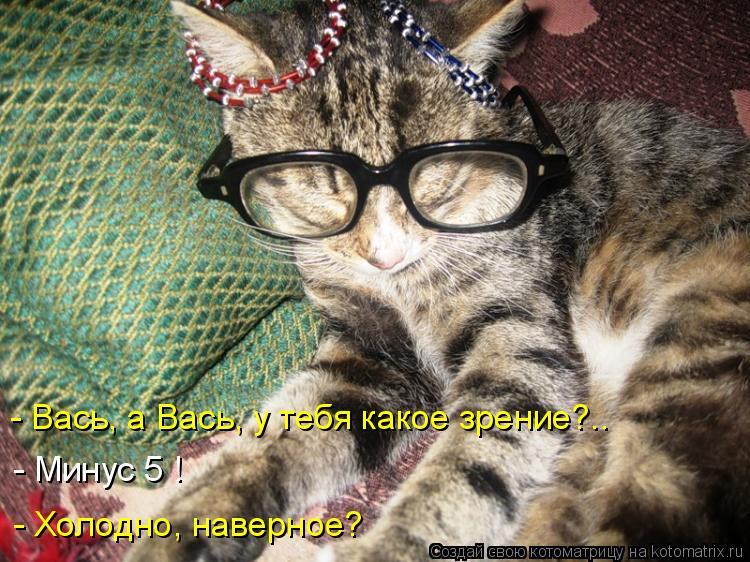 Котоматрица: - Вась, а Вась, у тебя какое зрение?.. - Минус 5 ! - Холодно, наверное?
