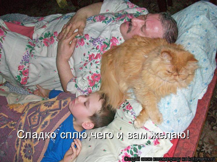 Котоматрица: Сладко сплю,чего и вам желаю!