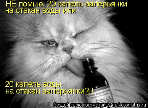 Котоматрица: НЕ помню: 20 капель валерьянки  на стакан воды или  20 капель воды  на стакан валерьянки?!!