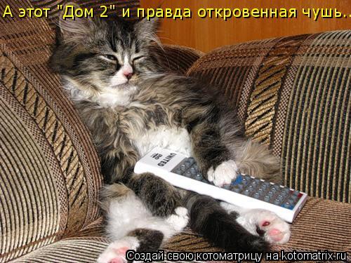 """Котоматрица: А этот """"Дом 2"""" и правда откровенная чушь..."""