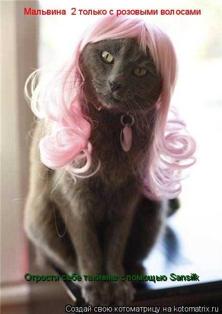 Котоматрица: Мальвина №2 только с розовыми волосами Отрости себе такиеже с помощью Sansilk