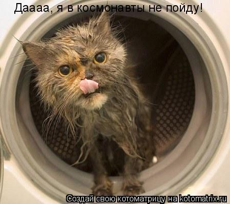 Котоматрица: Даааа, я в космонавты не пойду!