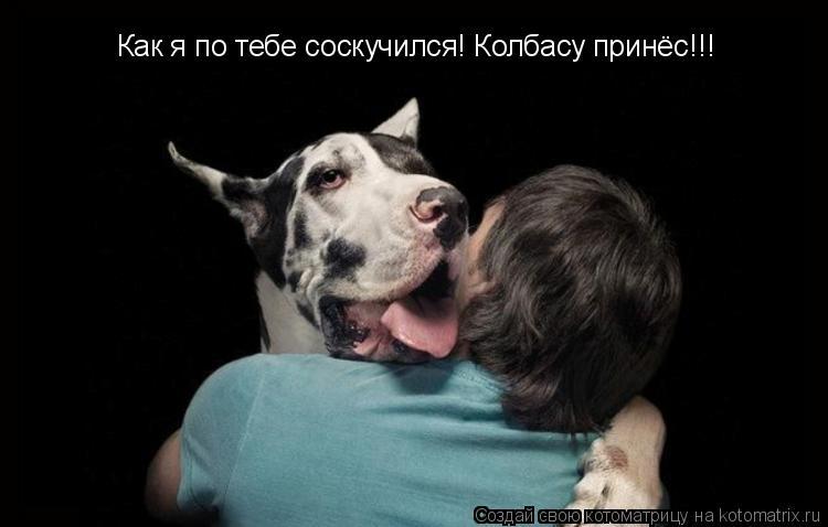 Котоматрица: Как я по тебе соскучился! Колбасу принёс!!!