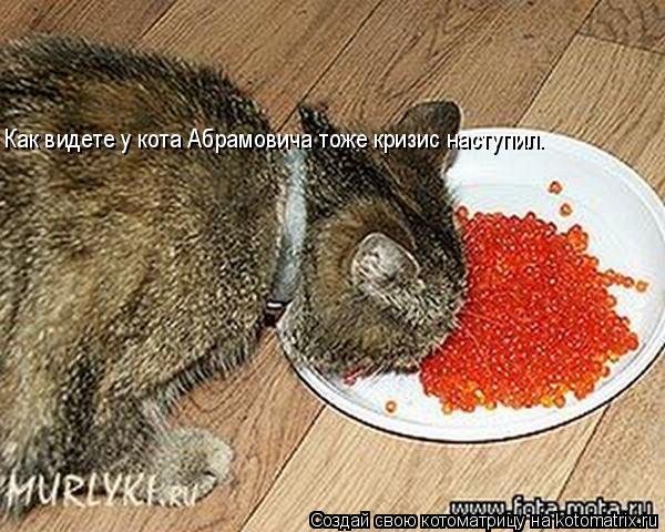 Котоматрица: Как видете у кота Абрамовича тоже кризис наступил.