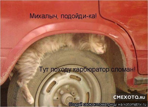 Котоматрица: Михалыч, подойди-ка!  Тут походу карбюратор сломан!