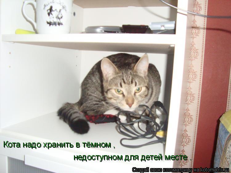 Котоматрица: Кота надо хранить в тёмном , недоступном для детей месте .