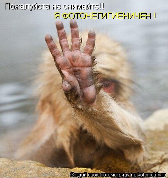 Котоматрица: Пожалуйста не снимайте!! Я ФОТОНЕГИГИЕНИЧЕН !