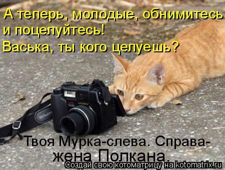 Котоматрица: А теперь, молодые, обнимитесь и поцелуйтесь! Васька, ты кого целуешь? Твоя Мурка-слева. Справа- жена Полкана.
