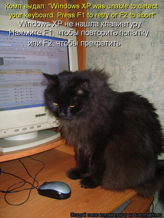 "Котоматрица: Комп выдал: ""Windows XP was unable to detect   your keyboard. Press F1 to retry or F2 to abort""  Windows XP не нашла клавиатуру. Нажмите F1, чтобы пов"