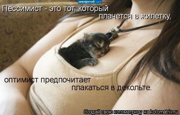 Котоматрица: Пессимист - это тот, который  плачется в жилетку,  оптимист предпочитает  плакаться в декольте.
