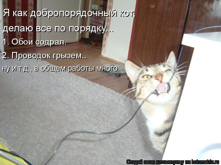 Котоматрица: Я как добропорядочный кот, делаю все по порядку... 1. Обои содрал. 2. Проводок грызем.. ну и т.д., в общем работы много.