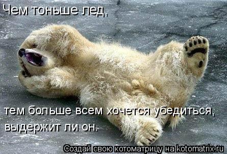 Котоматрица: Чем тоньше лед,  тем больше всем хочется убедиться,  выдержит ли он.