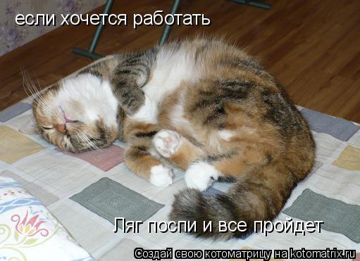Котоматрица: если хочется работать Ляг поспи и все пройдет