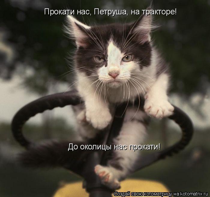 Котоматрица: Прокати нас, Петруша, на тракторе!  До околицы нас прокати!